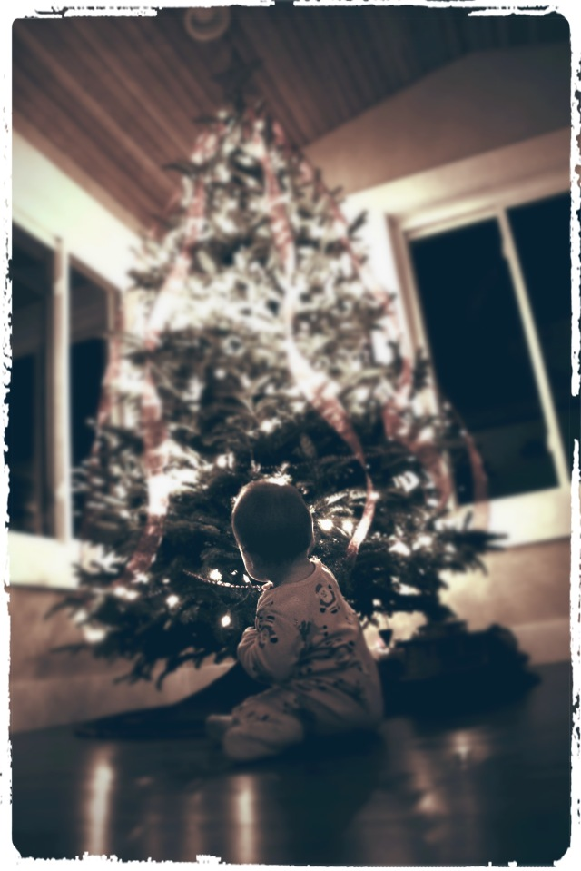 first tree 2